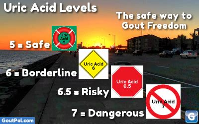 uric acid levels chart goutpal gout facts