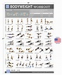 Bodyweight Exercise Poster - Total Body Fitness ...