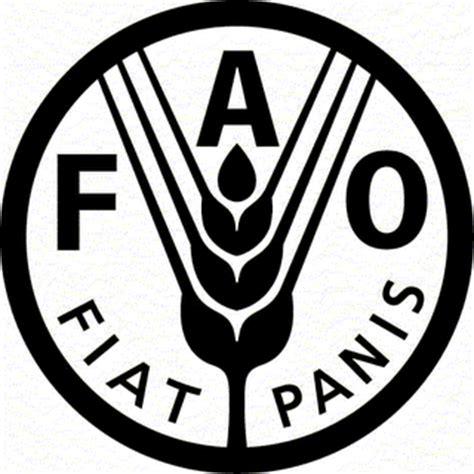 Fiat Panis by Microbiologia Fiat Panis Que Haja P 195 O