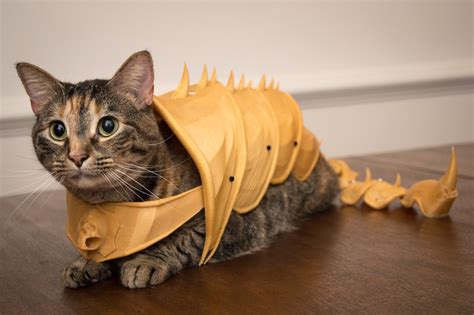 3D printed battle-armor for cats / Boing Boing