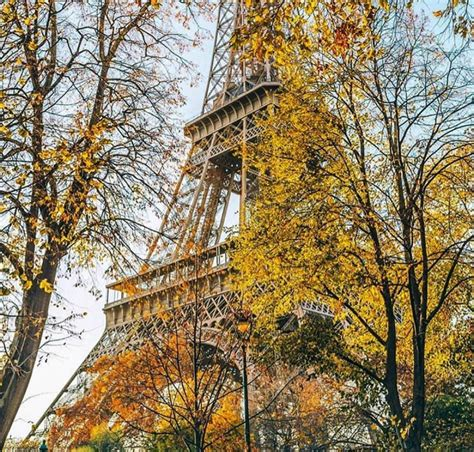 pin  amy spearing interiors  paris  images