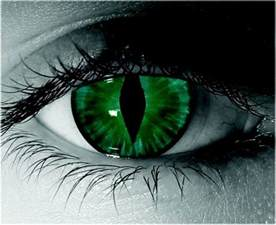 cat eye contact lenses green cat eye contact contacts