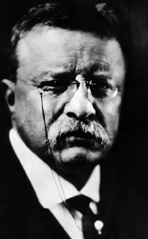theodore roosevelt motivational posters  art  manliness