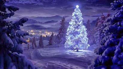 Christmas Tree Wallpapers Lights Night Snow Desktop