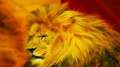 Lion King Desktop Definition Wide Widescreen Resolutions