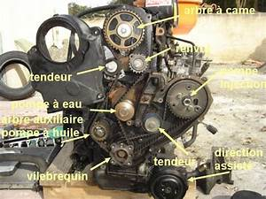 Entretien Ford Fiesta Courroie De Distribution : fiesta mk4 5 photo reportage entretien page 52 ford m canique lectronique forum ~ Gottalentnigeria.com Avis de Voitures