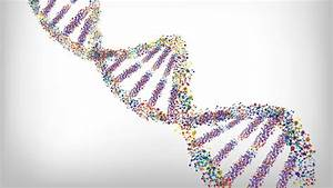 Sequencing a genome for less than the cost of an X-ray ...