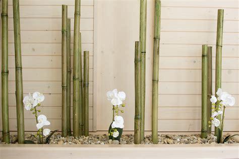 maison jardin cuisine brocante comment planter des bambous