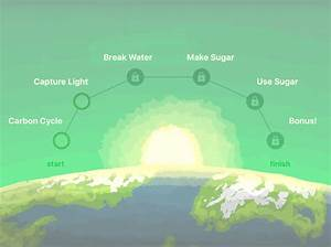 Drag The Labels Onto This Diagram Of The Carbon Cycle