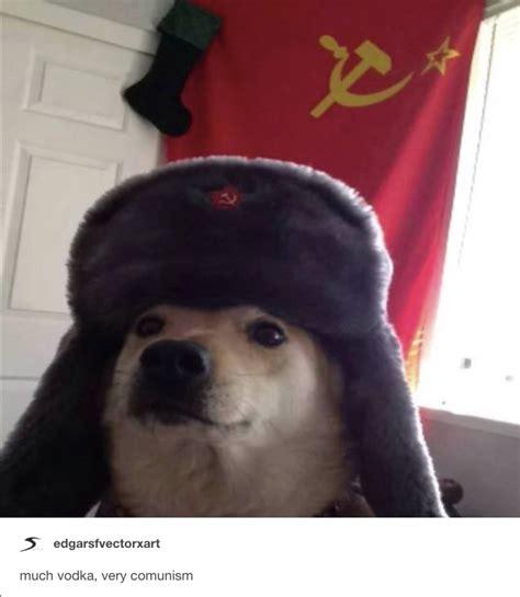 Much Vodka Very Comunism Comrade Doggo Know Your Meme