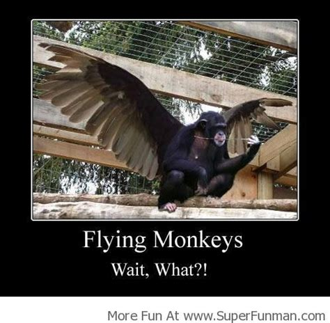 Flying Monkeys Meme - flying monkey tickle my funny bone pinterest monkey