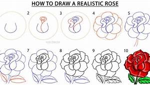 Here's how to draw a rose, step by step NTD TV