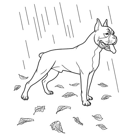 Honden Prinsesen Kleurplaat by Honden Kleurplaten Kleurplatenpagina Nl Boordevol