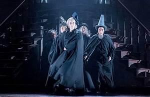 Mark Shenton: Will Harry Potter replicate 'the Hamilton ...