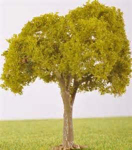 pl25102 80mm light green fruit tree no fruit the model tree shop