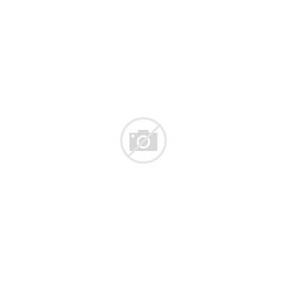 Mythical Creatures Icons Vector Phoenix Mythology Animals