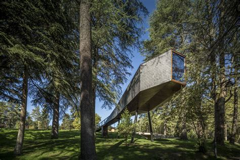 Tree Snake Houses In Pedras Salgadas by Storiesondesignbyyellowtrace Cunning Cantilevers