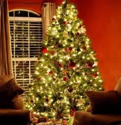 how many christmas lights for christmas trees 1000bulbs com blog