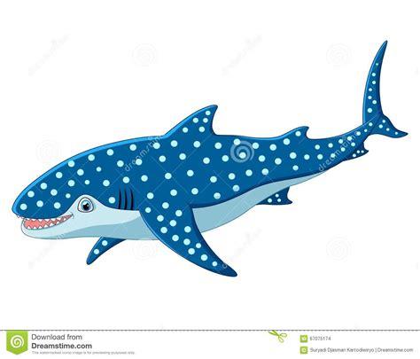 Leopard Shark Drawing Wwwimgkidcom The Image Kid Has It