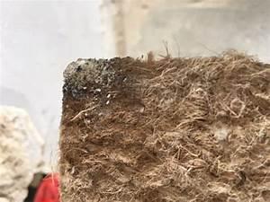Vinyl Asbest Platten : meint ihr es ist asbest vinylboden boden vinyl ~ A.2002-acura-tl-radio.info Haus und Dekorationen