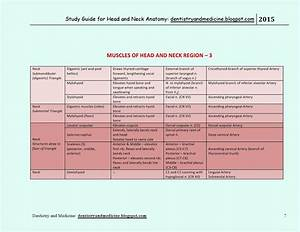 Dentistry And Medicine  Study Guide For Head And Neck