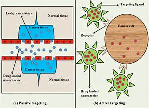 Active And Passive Targeting Approaches For The Treatment