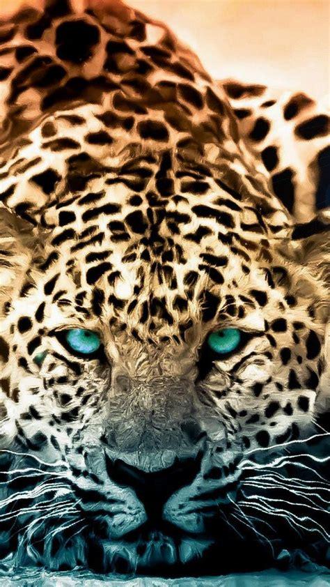 Jaguar Animal Iphone Wallpaper - 50 imagens para papel de parede 3d android wallpaper