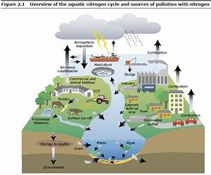 Sources Of Pollution