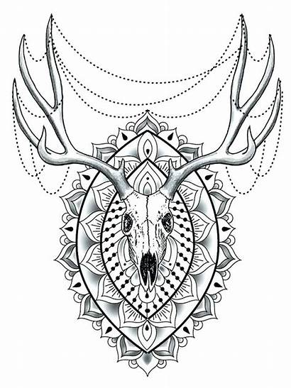 Animal Mandala Coloring Pages Animals Adults Difficult