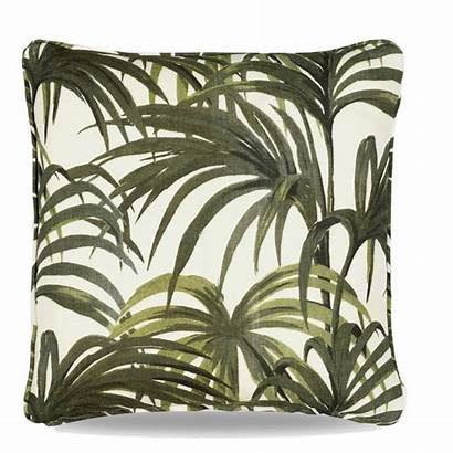 Palm Duvet Wanting Rounded Rest Beyond Across
