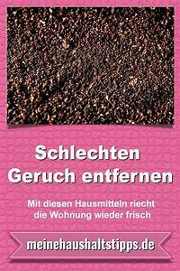 Gerüche Neutralisieren Wohnung : schlechten geruch entfernen mit diesen hausmitteln riecht ~ A.2002-acura-tl-radio.info Haus und Dekorationen