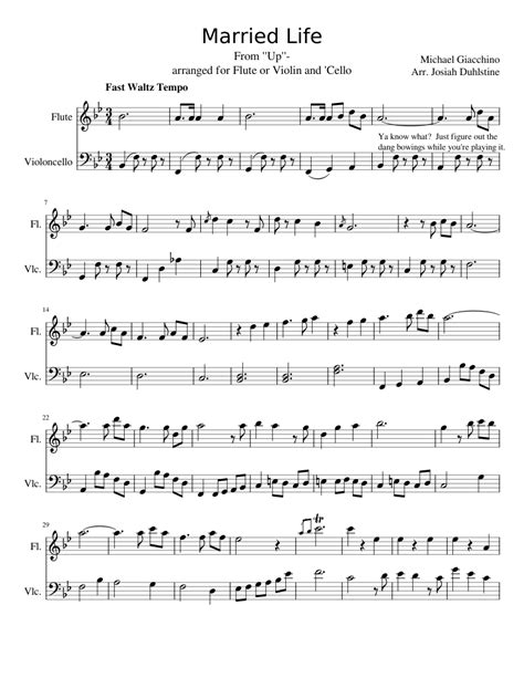 married life   flute  cello musescore sheet