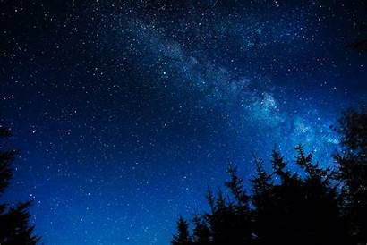 Sky Night Starry Stars Trees Glitter Wallpapers