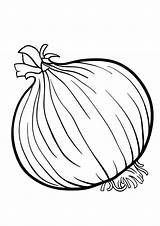 Coloring Onion Pages sketch template