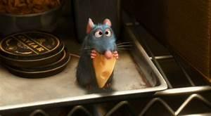 gif funny cute disney cheese gray Ratatouille mouse ...