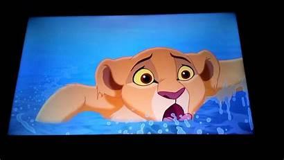 Timon Lion King Pumbaa Simba Kiara Pride