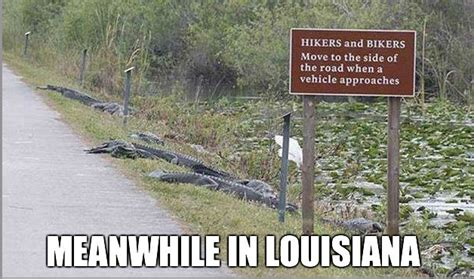 Louisiana Meme - hilarious jokes about louisiana