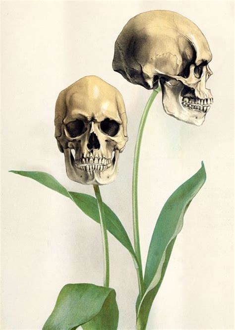 Scary Drawing Art Creepy Horror Grunge Green Flower Skull
