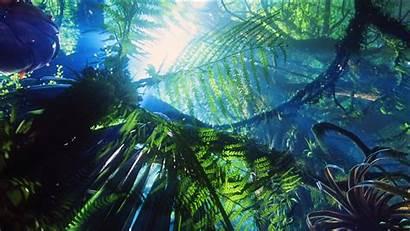 Avatar Background Wallpapers Pixelstalk