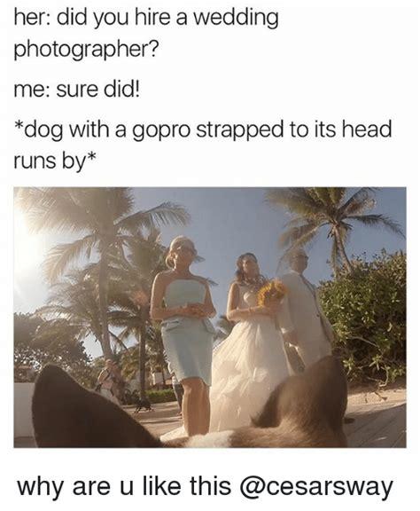 Wedding Photographer Meme - 25 best memes about sure sure memes