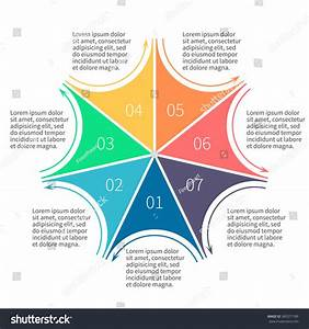 Infographics Step By Step Star Diagram Stock Vector