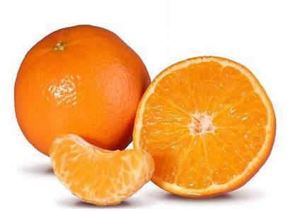 Citrus Nova Patensie