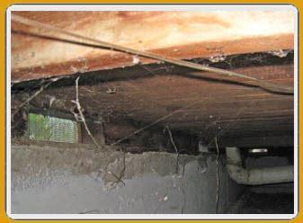 drain master plumbers richmond d or flooded basement