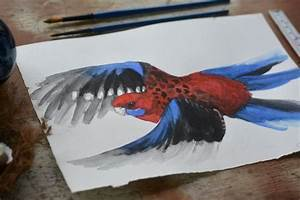 Crimson Rosella in Flight Original Watercolour Painting ...