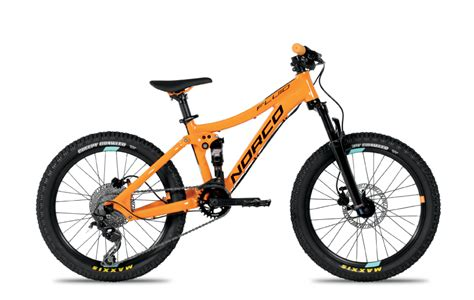 mountain bikes  kids rascal rides