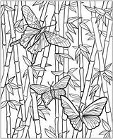 Pages Gardening Coloring Colouring Vegetable Vegetables Gardens Flower sketch template