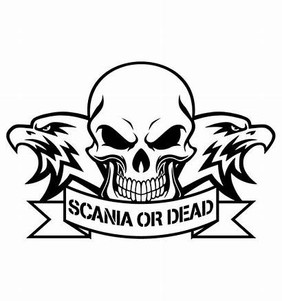 Scania Stickers Dead Camions Camion Developper Gt