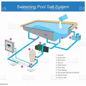 35 Swimming Pool Pump And Filter Installation Diagram