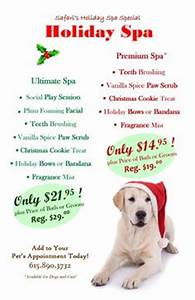 Dog Grooming Holiday Promotions & Ideas on Pinterest