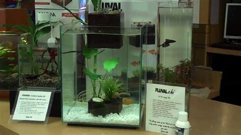 Fluval Chi Aquascape by Fluval Chi Aquarium With Water Feature At Aquariums West